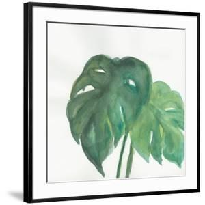 Tropical Palm II by Chris Paschke