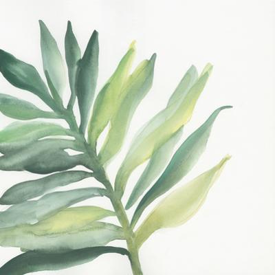 Tropical Palm III by Chris Paschke