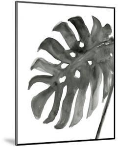 Tropical Palm IV BW by Chris Paschke