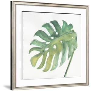 Tropical Palm IV by Chris Paschke