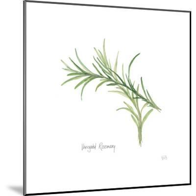 Variegated Rosemary V2 by Chris Paschke