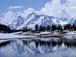 Grand Teton Reflected in Lake by Chris Rogers