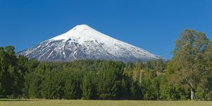 South America, Chile, Patagonia, Volcano Villarrica, Snowy Summit, Forest by Chris Seba