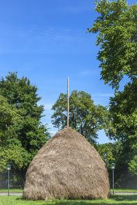 Traditional Haycock, Leipe, Spree Forest, Brandenburg, Germany, Europe by Chris Seba