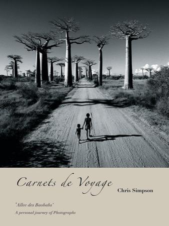 Allee des Baobabs I