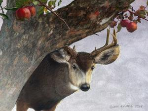 Apple Deer by Chris Vest