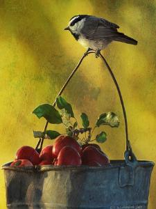 Apples and Chickadee by Chris Vest