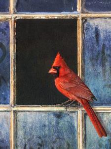Cardinal Window by Chris Vest