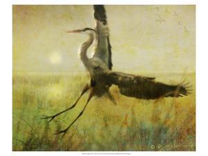 Foggy Heron II by Chris Vest