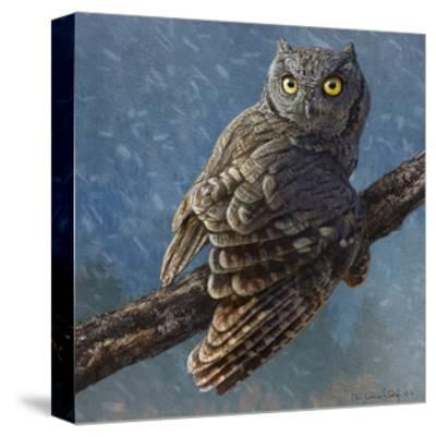 Owl in Winter I