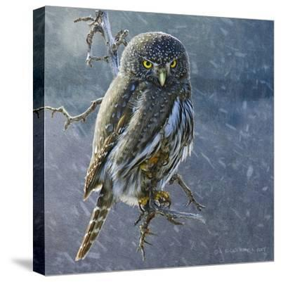 Owl in Winter II