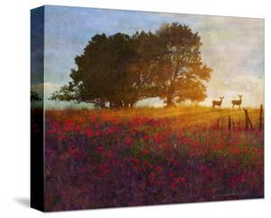 Trees, Poppies and Deer III by Chris Vest