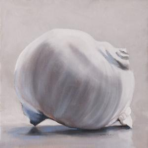 Moon Snail by Chris Witkowski