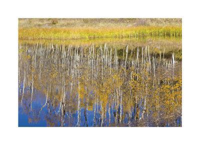 Chriss Lake-Don Paulson-Giclee Print