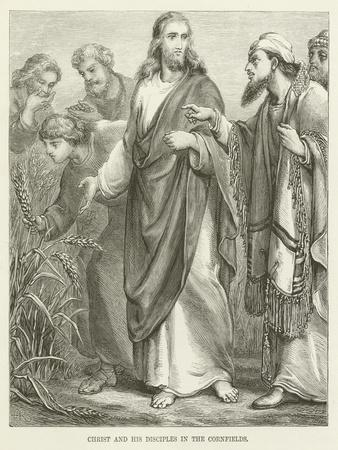 https://imgc.artprintimages.com/img/print/christ-and-his-disciples-in-the-cornfields_u-l-ppemos0.jpg?p=0