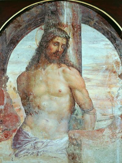 Christ at the Column, C.1514-Giovanni Antonio Bazzi Sodoma-Giclee Print