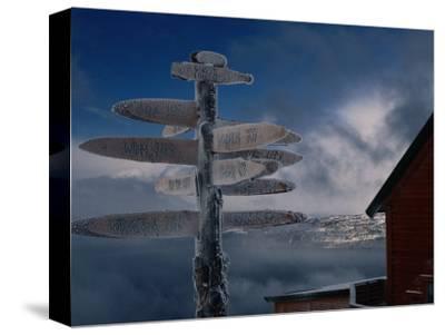 Frozen Signpost, Narvik, Nordland, Norway