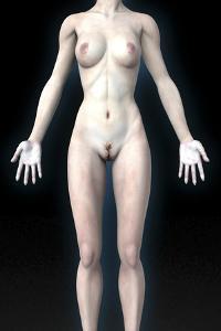 Naked Woman by Christian Darkin
