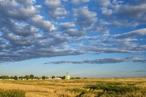 Canada, Alberta, Stavely, Prairie Landscape by Christian Heeb