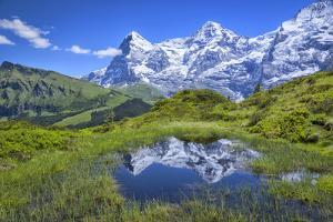 Europe, Switzerland, Bern, Bernese Oberland, Reflection in pond with eiger by Christian Heeb