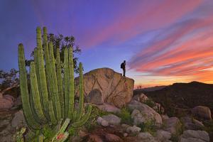 Mountains Near La Ventanaz, Baja California, Mexico by Christian Heeb