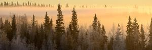 Sunrise over Fairbanks, Alaska, Usa by Christian Heeb