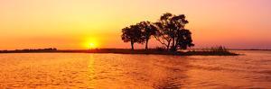 Sunset and Island, Chobe River Near Kasane,Africa, Botswana, Chobe National Park by Christian Heeb