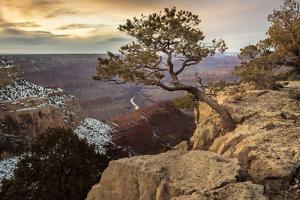USA, Arizona, Grand Canyon, National Park, UNESCO, World Heritage by Christian Heeb