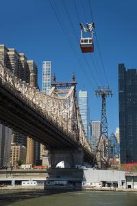 USA, East Coast, New York, Midtown, East River, Roosevelt Island, Queensboro Bridge by Christian Heeb