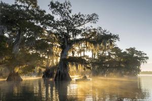 USA, Louisiana, Jefferson Parish,St.Martinville, Lake Fausse by Christian Heeb