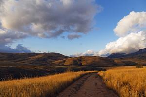 Andringitra National Park, Ambalavao, central area, Madagascar, Africa by Christian Kober
