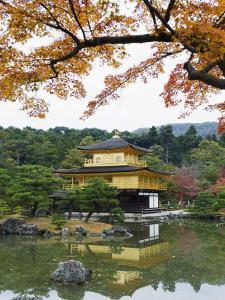 Autumn Colour Leaves, Golden Temple, Kinkaku Ji (Kinkakuji), Dating from 1397, Kyoto, Japan, Asia by Christian Kober
