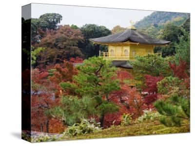 Autumn Colour Leaves, Golden Temple, Kinkaku Ji (Kinkakuji), Dating from 1397, Kyoto, Japan, Asia