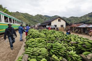 Bananas waiting to be transported, Fianarantsoa to Manakara FCE train, easterrn area, Madagascar, A by Christian Kober