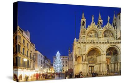 Christmas Tree in St. Marks Square, San Marco, Venice, UNESCO World Heritage Site, Veneto, Italy