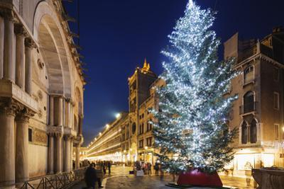 Christmas Tree in St. Marks Square, San Marco, Venice, UNESCO World Heritage Site, Veneto, Italy by Christian Kober