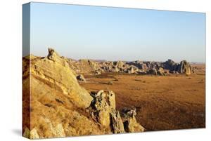 Desert landscape, Isalo National Park, central area, Madagascar, Africa by Christian Kober
