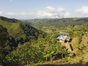 Finca Don Eduardo, Coffee Farm, Salento, Colombia, South America by Christian Kober
