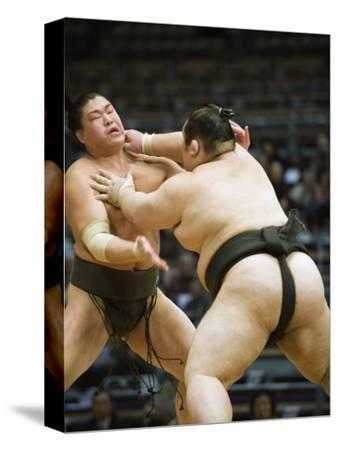 Fukuoka Sumo Competition, Kyushu Basho, Fukuoka City, Kyushu, Japan, Asia
