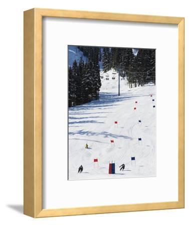 Giant Slalom Racers at Whistler Mountain Resort