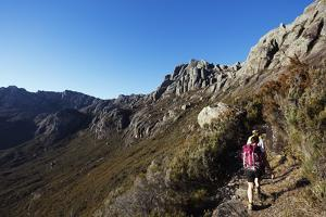 Hikers walking to Pic Boby, Andringitra National Park, Ambalavao, central area, Madagascar, Africa by Christian Kober