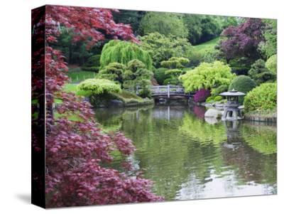 Japanese Garden, Brooklyn Botanical Garden, Brooklyn