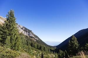Pirin National Park, UNESCO World Heritage Site, Bansko, Bulgaria, Europe by Christian Kober