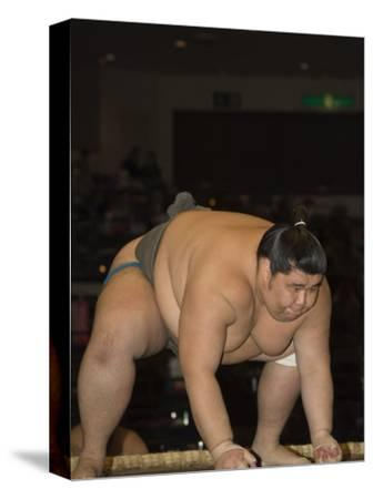 Sumo Wrestler Competing, Grand Taikai Sumo Wrestling Tournament, Kokugikan Hall Stadium, Tokyo