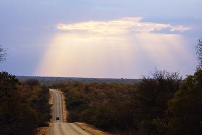 Sunset, Kruger National Park, South Africa, Africa by Christian Kober