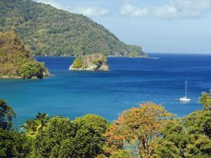 The Caribbean, Trinidad and Tobago, Tobago Island by Christian Kober