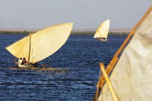 Traditional sail boats, Majunga (Mahajanga), western area, Madagascar, Africa by Christian Kober