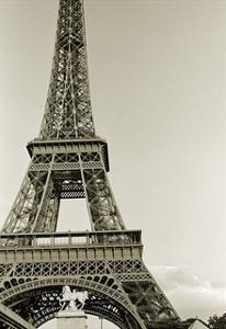 Eiffel Tower from the River Seine by Christian Peacock