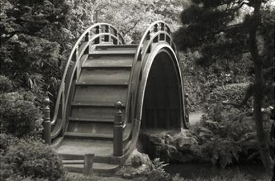 Moon Bridge in Tea Garden