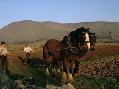 Horse and Plough, County Sligo, Connacht, Eire (Republic of Ireland)